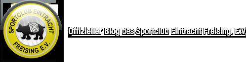 Offizieller Blog