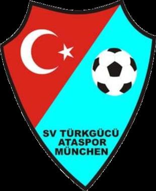 Logo Türk Gücü
